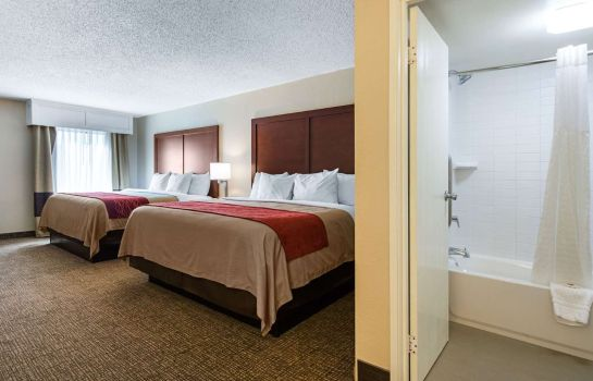 Junior Suite Comfort Inn & Suites Airport