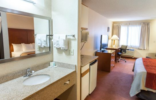Room Comfort Inn Denver Southeast Area