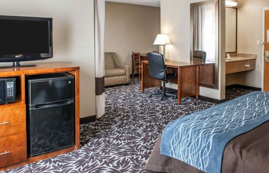 Suite Comfort Inn South