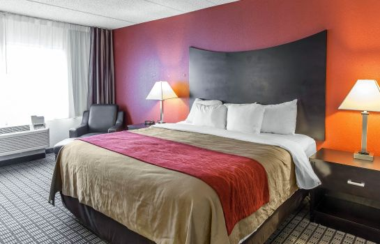Habitación Comfort Inn and Suites BWI Airport