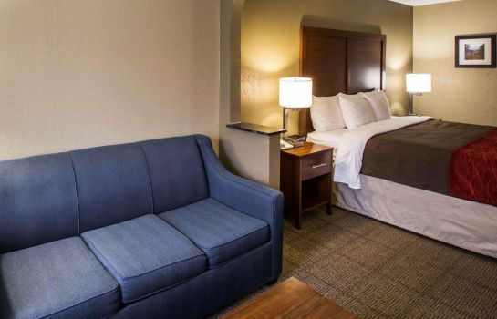 Suite Comfort Inn Biltmore West
