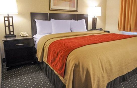 Suite Comfort Inn & Suites North