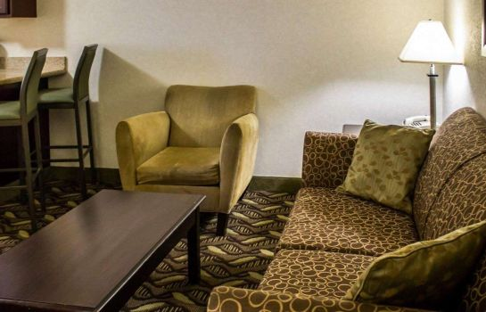 Suite Quality Inn and Suites Mansfield