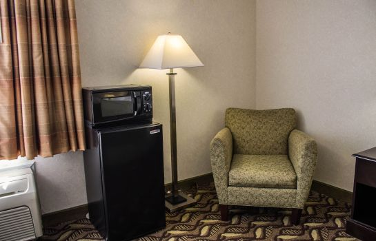 Camera Quality Inn and Suites Mansfield
