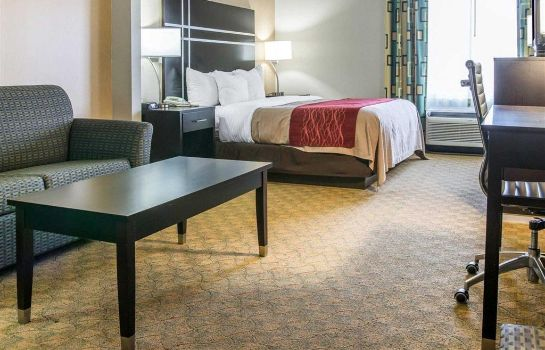 Suite Comfort Inn and Suites Maumee - Toledo (
