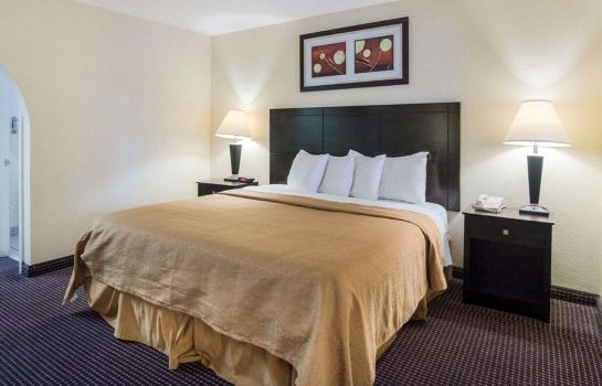 Double room (superior) Quality Inn & Suites West - Energy Corridor