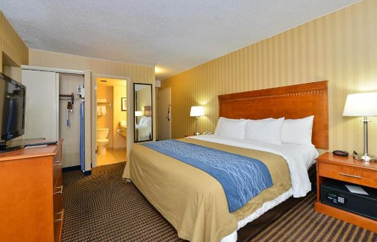 Camera Comfort Inn & Suites Alexandria