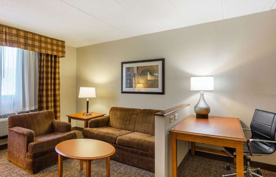 Suite Comfort Inn Washington Dulles International