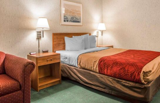 Chambre Econo Lodge Rothschild