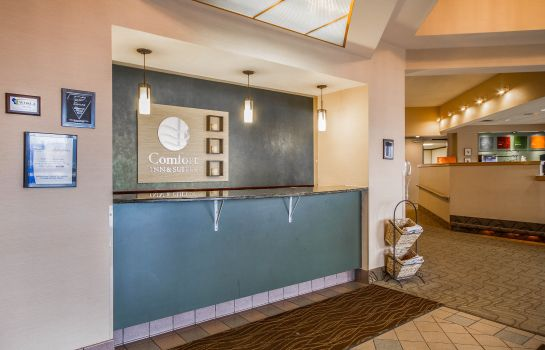 Hotelhalle Comfort Inn & Suites Madison - Airport