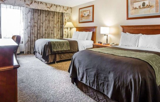 Room Comfort Inn at Buffalo Bill Village Resort
