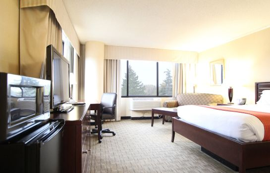 Chambre Holiday Inn MINNEAPOLIS AIRPORT SE - EAGAN
