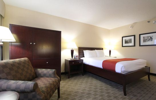 Room Holiday Inn MINNEAPOLIS AIRPORT SE - EAGAN