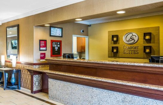 Hotelhalle Comfort Suites Near Six Flags Magic Moun