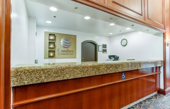 Hotelhalle Comfort Inn & Suites San Francisco Airport North