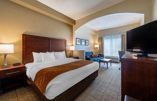 Suite Comfort Suites Downtown