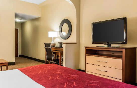 Info Comfort Suites Tallahassee Downtown