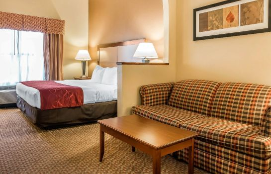 Zimmer Comfort Suites Tallahassee Downtown