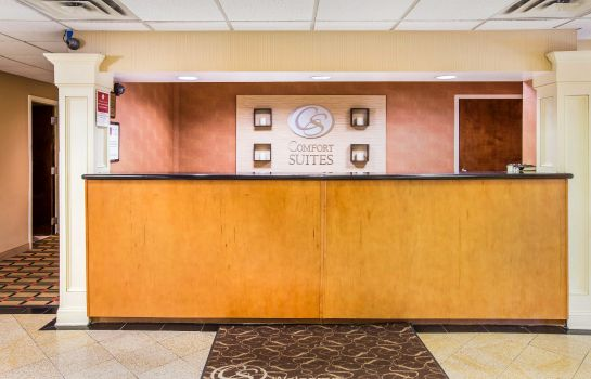 Hotelhalle GA  Alpharetta Country Inn and Suites By Carlson