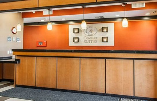 Hotelhalle Comfort Suites NE Indianapolis Fishers