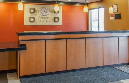 Lobby Comfort Suites NE Indianapolis Fishers