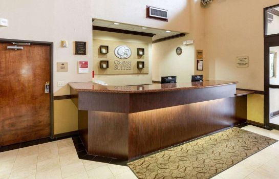Hotelhalle Comfort Suites Bush Intercontinental Airport