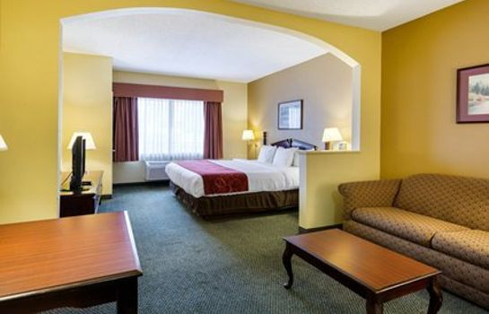 Suite Comfort Suites Bush Intercontinental Airport