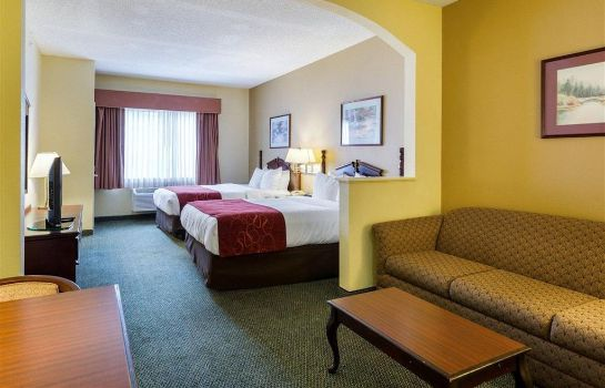 Suite Comfort Suites Bush Intercontinental Air