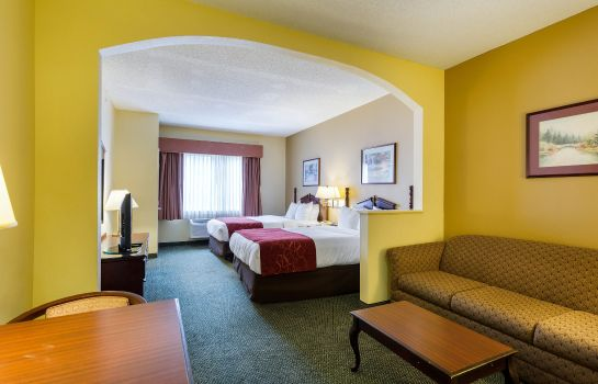 Zimmer Comfort Suites Bush Intercontinental Airport