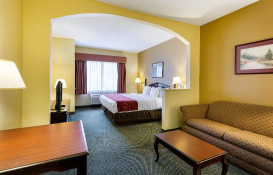 Chambre Comfort Suites Bush Intercontinental Airport