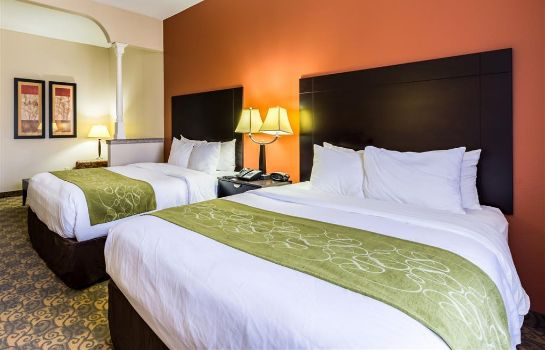 Suite Comfort Suites Westchase Houston Energy