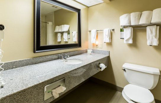 Chambre Comfort Suites Westchase Houston Energy