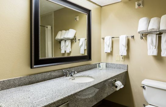 Chambre Comfort Suites Westchase