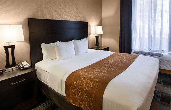 Chambre Comfort Suites Houston West at Clay Road