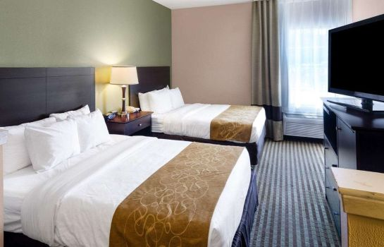 Suite Comfort Suites Las Colinas Center