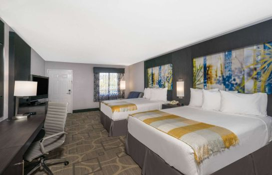 Suite DAYS INN ASHEVILLE NORTH