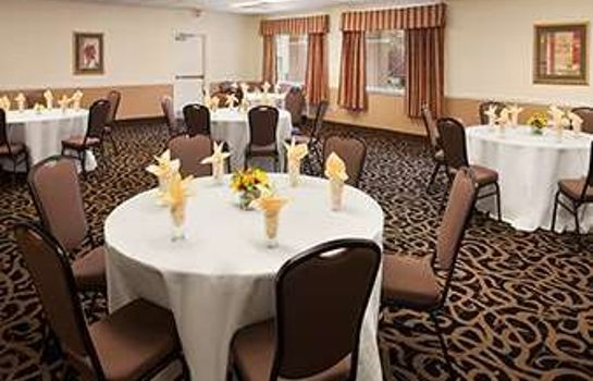 Conference room DAYS INN ALEXANDRIA
