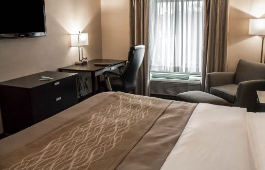 Chambre Holiday Inn Express & Suites ALBANY AIRPORT - WOLF ROAD