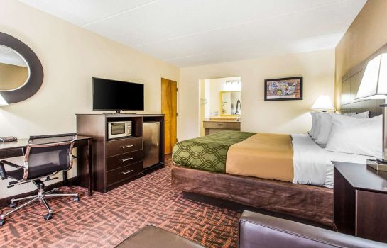 Kamers Econo Lodge Asheville Airport