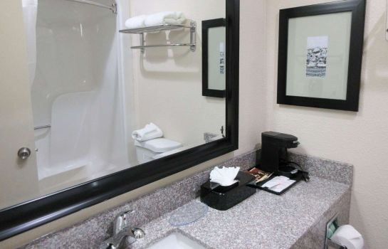 Zimmer Quality Inn Airport-Near Uptown