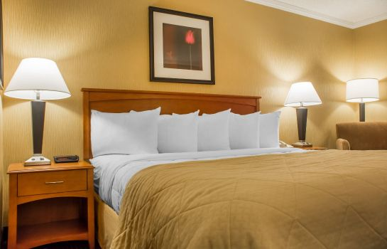 Camera Quality Inn & Suites Riverfront