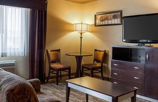 Suite Econo Lodge Rapid City