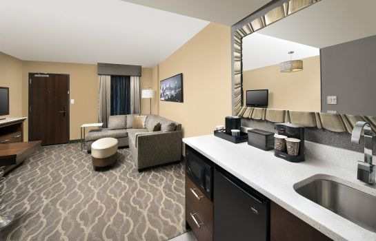 Suite Embassy Suites by Hilton Atlanta Airport