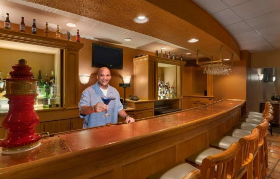 Hotel-Bar Embassy Suites by Hilton Chicago Schaumburg Woodfield
