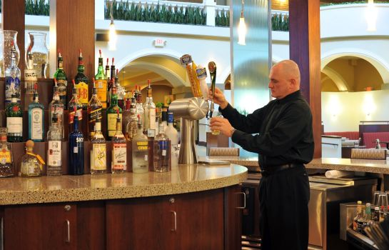 Hotel bar Embassy Suites by Hilton Dallas Park Central Area