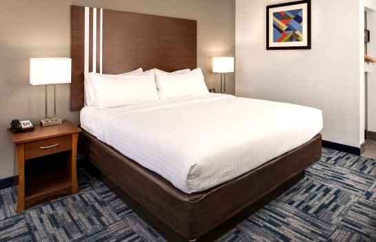 Zimmer Holiday Inn Express & Suites ALAMOGORDO