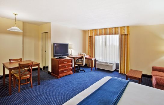 Suite Holiday Inn Express & Suites ATLANTA N-PERIMETER MALL AREA