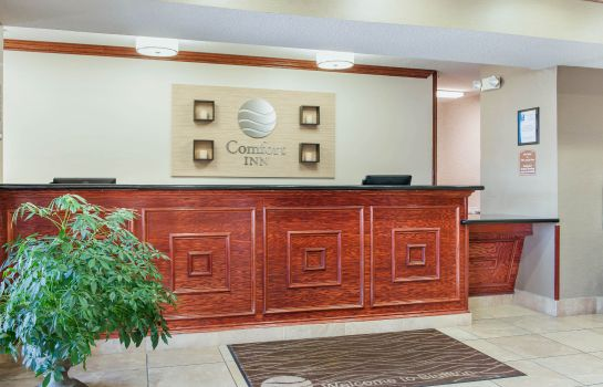 Hall Comfort Inn Bluffton