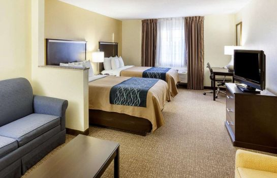 Suite Comfort Inn & Suites Texas Hill Country