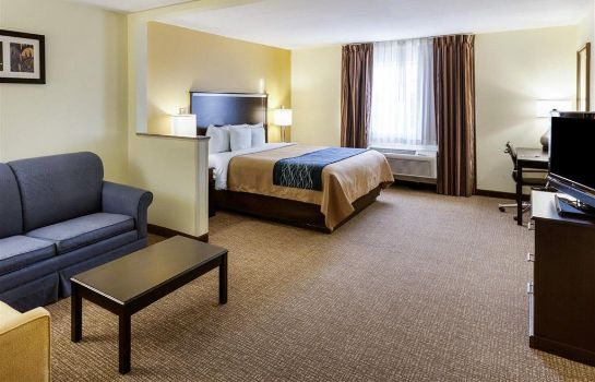 Suite Comfort Inn and Suites Texas Hill Countr